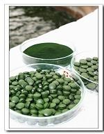 What is Chlorella